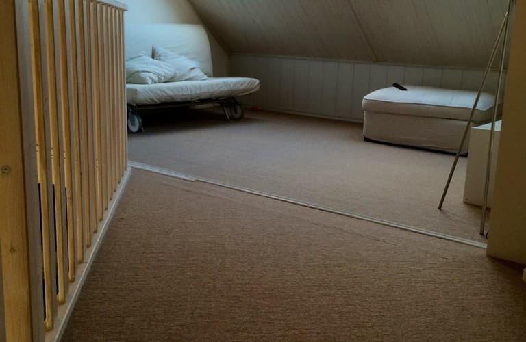 Jan van Gent 01 Type Duinroos